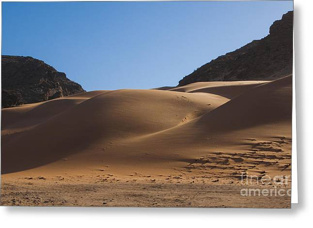 Berges Greeting Cards - Sand Dunes Of Hartmann Berge, Namibia Greeting Card by Bill Bachmann