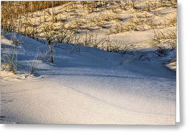 Florida Panhandle Greeting Cards - Sand Dunes of Navarre Greeting Card by JC Findley