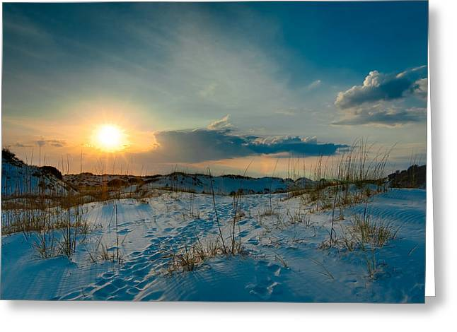 St Joseph Peninsula State Park Greeting Cards - Sand Dunes of the St. Joeseph Peninsula Greeting Card by Rich Leighton