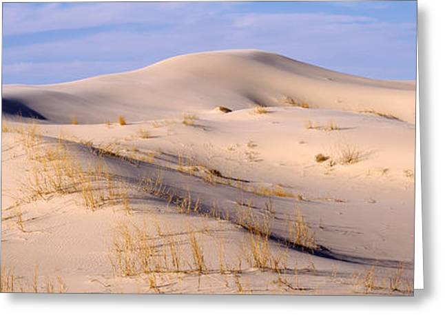 Sand Pattern Greeting Cards - Sand Dunes On An Arid Landscape Greeting Card by Panoramic Images