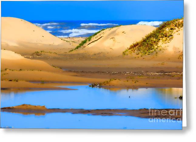 Barrier Island Greeting Cards - Sand Dunes on the Gulf of Mexico Greeting Card by Louise Heusinkveld