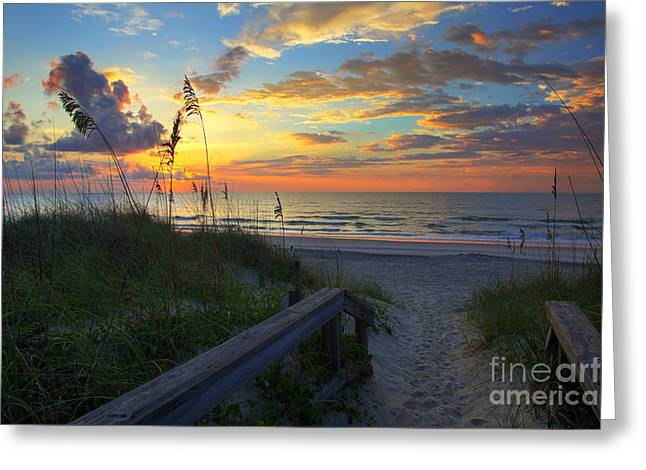 Beach Landscape Greeting Cards - Sand dunes on the Seashore at Sunrise - Carolina Beach NC Greeting Card by Wayne Moran