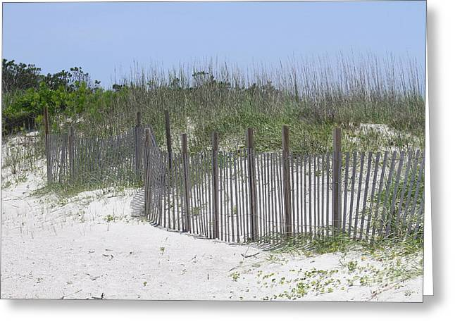 Sand Fence at Cape Lookout Greeting Card by Cathy Lindsey