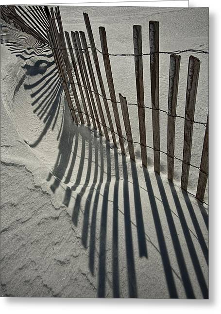 Randy Greeting Cards - Sand Fence during Winter on the Beach Greeting Card by Randall Nyhof