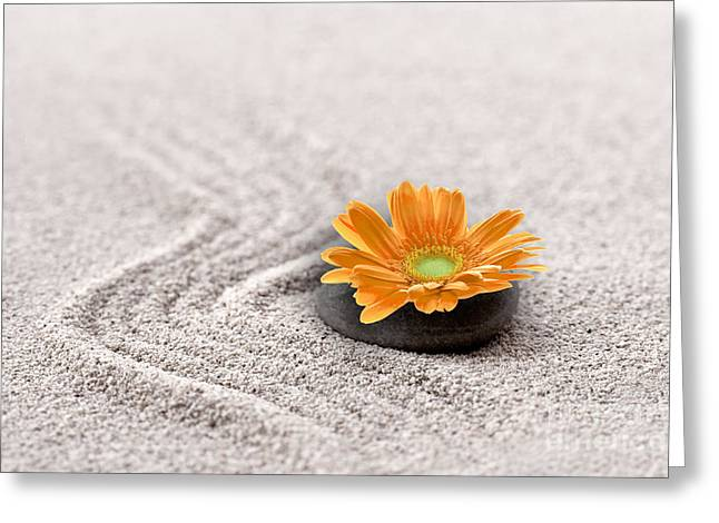Mindful Greeting Cards - Sand garden Greeting Card by Delphimages Photo Creations
