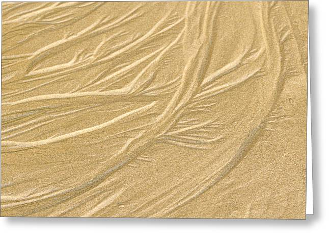 Granular Greeting Cards - Sand Painting Greeting Card by Jean Noren