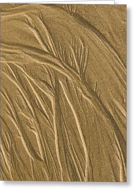 Granular Greeting Cards - Sand Painting2 Greeting Card by Jean Noren