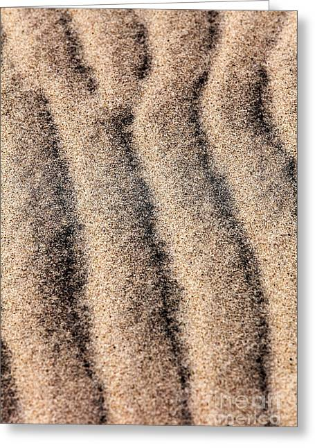 Sand Patterns IIi Greeting Card by John Rizzuto