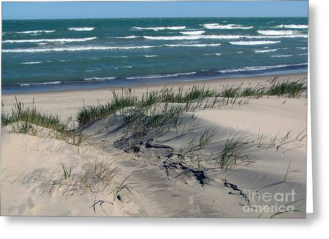 Indiana Dunes Greeting Cards - Sand Ripples 2 Greeting Card by Cedric Hampton