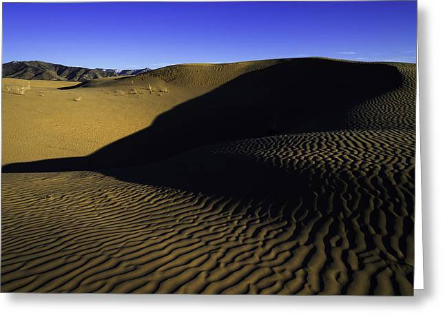 Shadows Greeting Cards - Sand Ripples Greeting Card by Chad Dutson