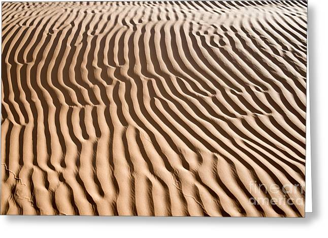 Sand Ripples Greeting Cards - Sand ripples Greeting Card by Delphimages Photo Creations
