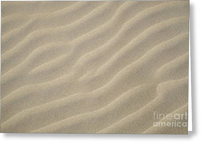 Sand Pattern Greeting Cards - Sand Ripples Greeting Card by Greg Dimijian