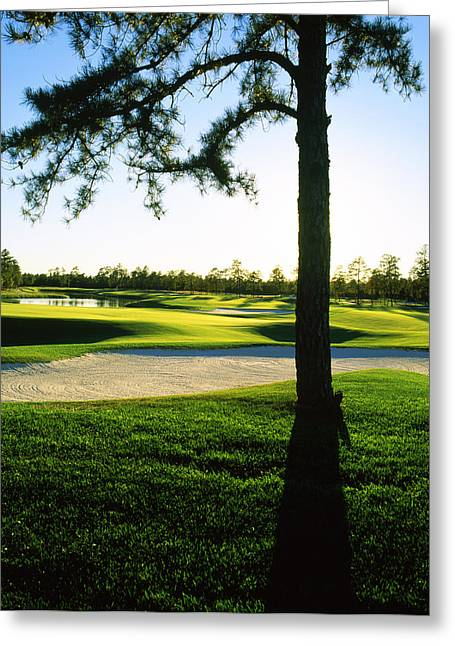 Township Greeting Cards - Sand Trap In A Golf Course, Ballamor Greeting Card by Panoramic Images