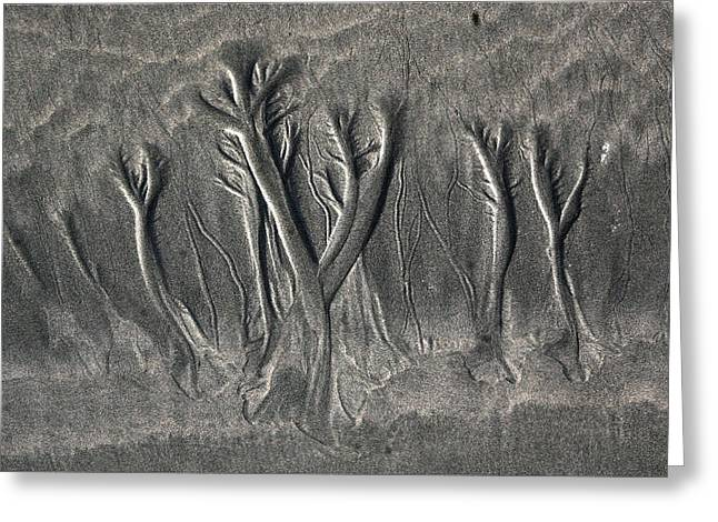 Sand Patterns Mixed Media Greeting Cards - Sand Trees Greeting Card by Alicia Kent