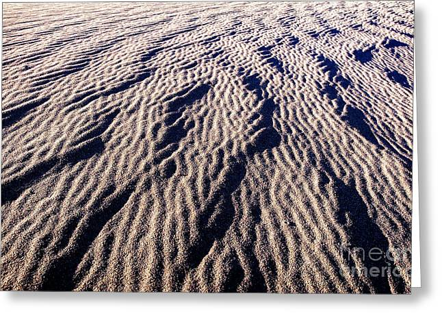 Granular Greeting Cards - Sand Waves Greeting Card by Charles Dobbs
