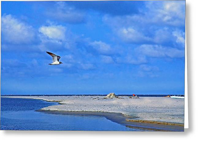 Sandbar Bliss Greeting Card by Marie Hicks