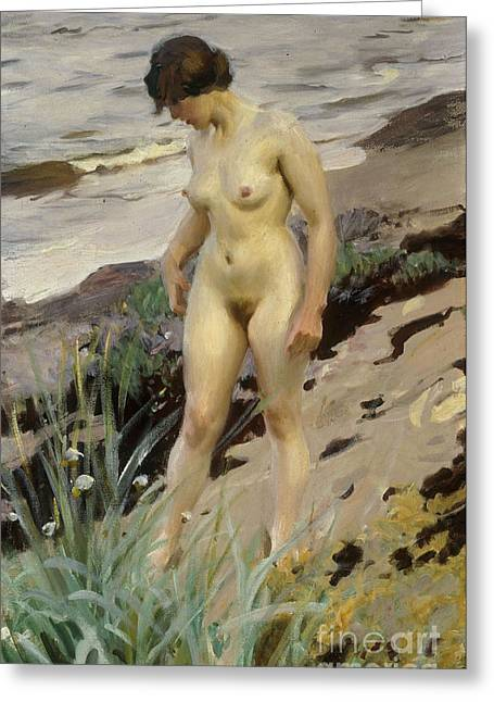 Curved Greeting Cards - Sandhamn Study Greeting Card by Anders Leonard Zorn