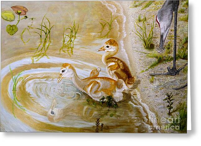 Sandhill Cranes Paintings Greeting Cards - Sandhill cranes chicks first bath Greeting Card by Zina Stromberg