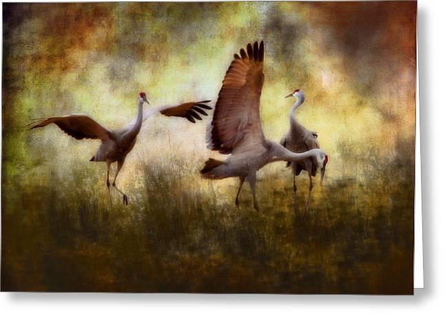 Abstracted Wildlife Art Greeting Cards - Sandhill Cranes  Greeting Card by Ellen Heaverlo