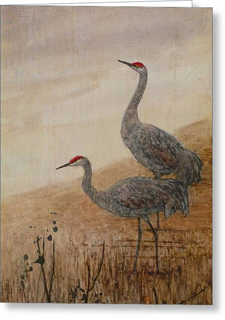 Sandhill Cranes Paintings Greeting Cards - Sandhill Cranes Greeting Card by Floy Zittin