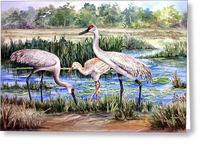 Sandhill Cranes Paintings Greeting Cards - Sandhills by the Pond Greeting Card by Roxanne Tobaison