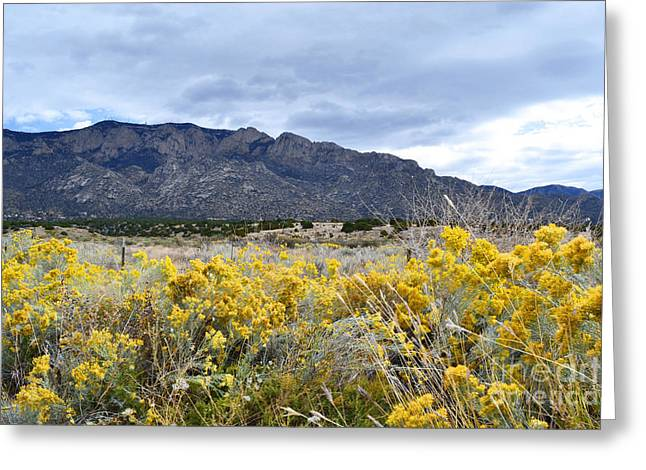 Sandias Greeting Cards - Sandia Country Wildflowers Greeting Card by Andrea Hazel Ihlefeld