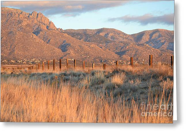 Sandia Mountains Greeting Cards - Sandia Mountain Sunset Countryside Greeting Card by Andrea Hazel Ihlefeld
