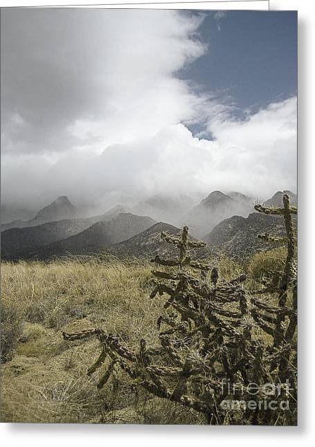 Sandia Mountains Greeting Cards - Sandia Mountains Peaks Greeting Card by Andrea Hazel Ihlefeld