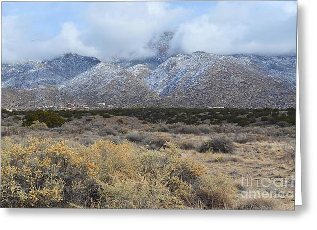 Sandia Mountains Greeting Cards - Sandia Mountains Winter Colors Greeting Card by Andrea Hazel Ihlefeld