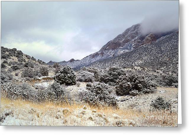 Sandias Greeting Cards - Sandia Winter Countryside Greeting Card by Andrea Hazel Ihlefeld