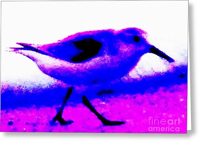 Sandpiper Abstract Greeting Card by Eric  Schiabor