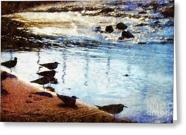 Seagulls On The Sand Greeting Cards - Sandpipers at the Shore Greeting Card by Janine Riley
