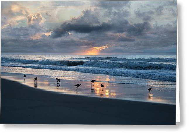 Sandpipers In Paradise Greeting Card by Betsy Knapp