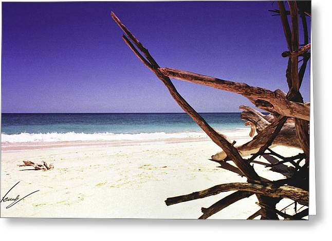Max Callender Greeting Cards - Sands of Barbados Greeting Card by Max CALLENDER