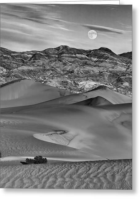 Sanddunes Greeting Cards - Sands Of Time Greeting Card by Alan Kepler