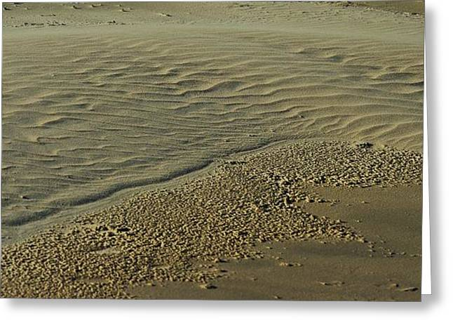 Australia Greeting Cards - Sands of Time Greeting Card by Blair Stuart