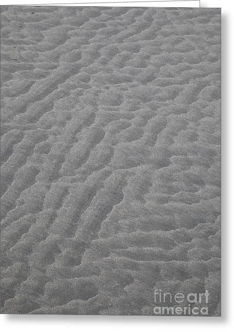 B.c Greeting Cards - Sandscape Greeting Card by Graham Foulkes