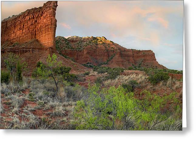 Caprock Canyons State Park Greeting Cards - Sandstone Cliffs Caprock Canyons Texas Greeting Card by Tim Fitzharris