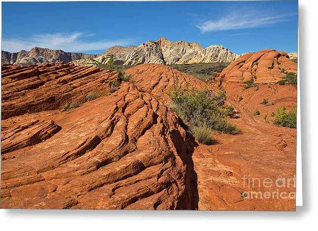 Sandstone Formations Snow Canyon State Greeting Card by