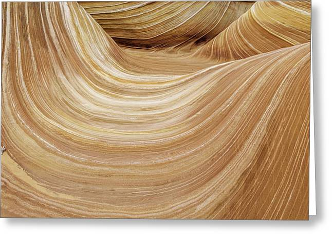 Petrified Greeting Cards - Sandstone Lines Greeting Card by Chad Dutson