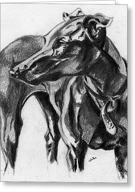 Collar Drawings Greeting Cards - Sandy 1 Greeting Card by Callan Percy