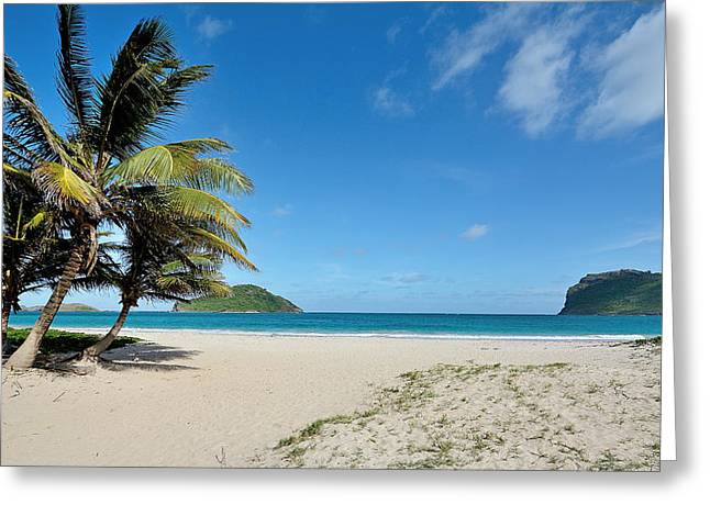 Sandy Beaches Greeting Cards - Sandy Beach and Maria Island - St. Lucia Greeting Card by Brendan Reals