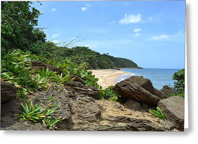 Sandy Beach at Rincon PR Greeting Card by Tim Treadwell