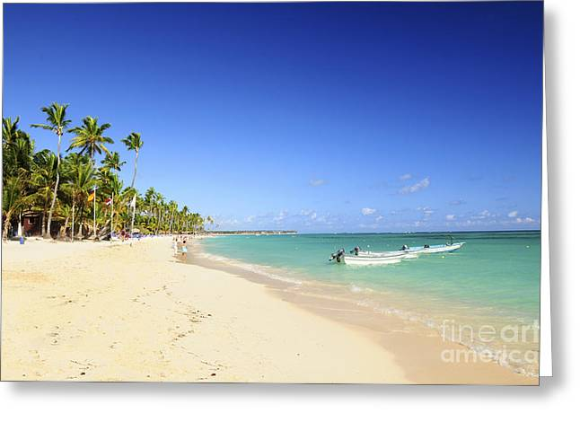 Surf Lifestyle Greeting Cards - Sandy beach on Caribbean resort  Greeting Card by Elena Elisseeva