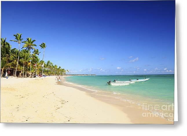 Sandy beach on Caribbean resort  Greeting Card by Elena Elisseeva
