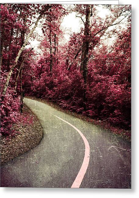 Pink Road Greeting Cards - Sandy lake path Greeting Card by Jerry Cordeiro