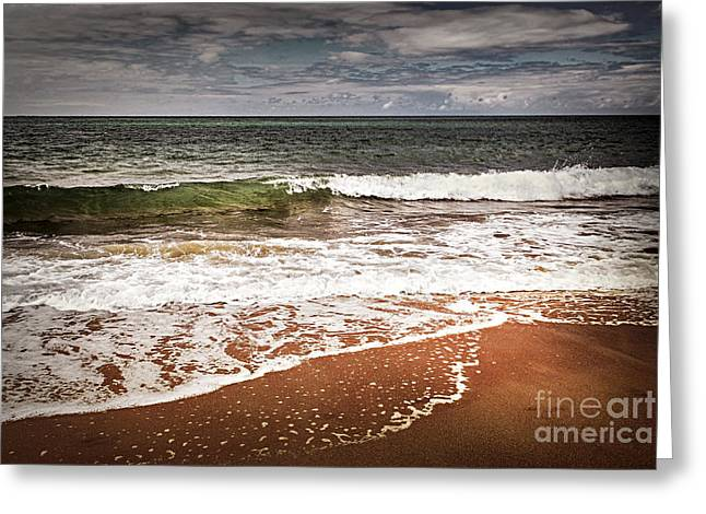 Ocean Shore Greeting Cards - Sandy ocean beach Greeting Card by Elena Elisseeva