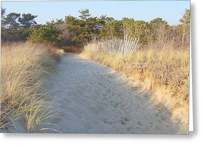 Winter In Maine Greeting Cards - Beach Pathway Greeting Card by Eunice Miller