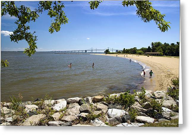 Sandy Point Park Greeting Cards - Sandy Point Beach Greeting Card by Brian Wallace