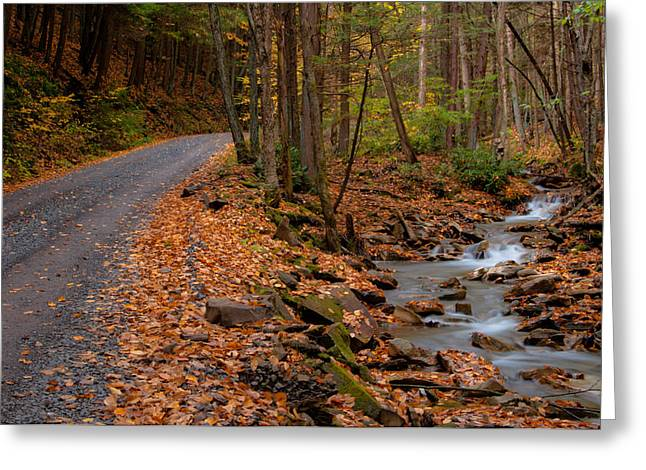 Mountain Road Greeting Cards - Sandy Run Greeting Card by Scott Hafer